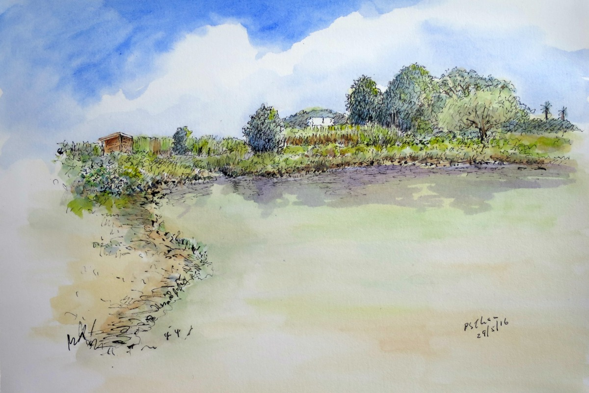 Watercolour painting of Kranji Marshes