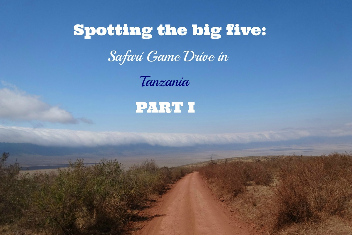 Spotting the Big Five part 1