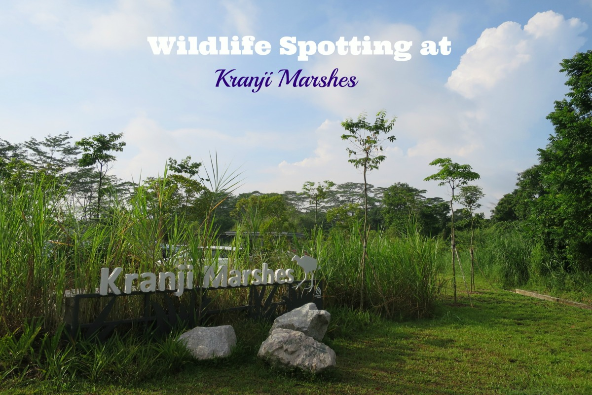 Entrance of Kranji Marshes