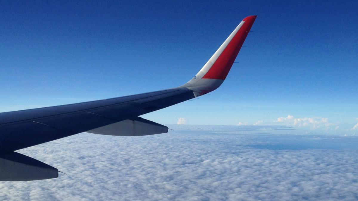 Wingtip.jpg